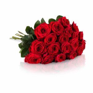geschenkideen-zum-valentinstag_miflora-blumenstrauss-20-rote-rosen-mit-xxl-bluetenkoepfen-gratis-grusskarte-inklusive
